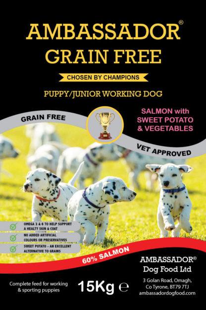 Ambassador Grain Free Salmon Puppy Food